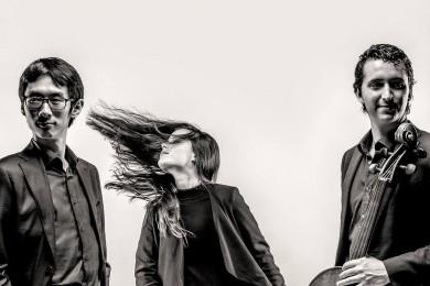 Amatis Trio
