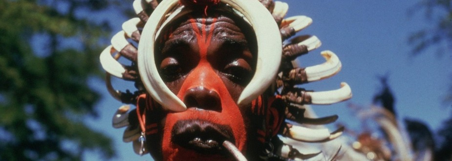 Binder: for seven days / Fanshawe: African Sanctus