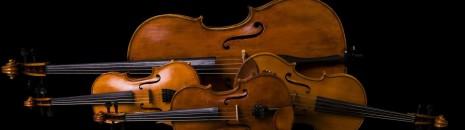 Utazás Symphoniába - A vonósok