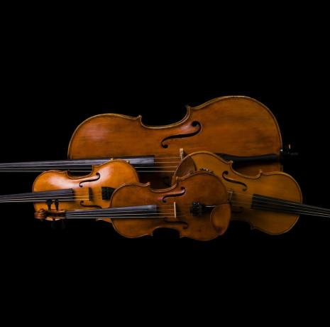 Utazás Symphoniába - Vonósok